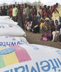 Can Ethiopia Survives Drought Without International Aid?